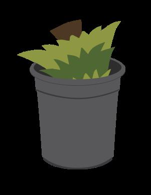 TreeDisposal